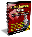 Product picture Niche Business Profits - Predictions 2006
